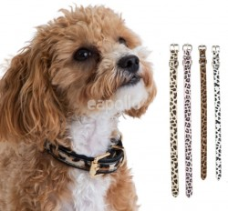Leopard Print Pet Collar in Assorted Colours & Sizes