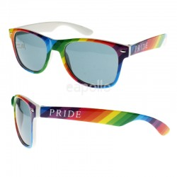 Wayfarer Sunglasses (Pride Colours) - Rainbow