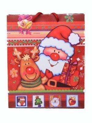 Christmas Santa gift bag (22x18x7cm)