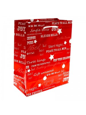 Christmas Themed Gift Bag - Medium (18x23x9cm)