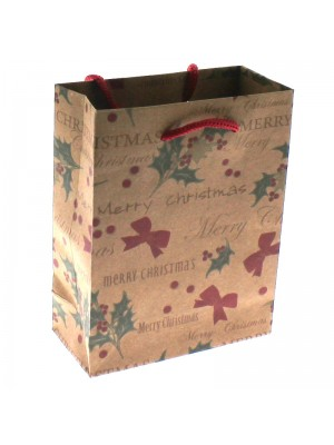Mistletoe Christmas Themed Gift Bag - Small (12x15x5.5cm)