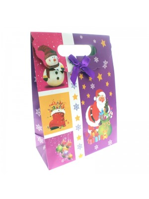 Christmas Gift Bag Santa (medium)
