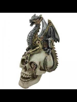 Skull with Dragon's Grasp - 18.5cm