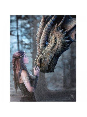 Anne Stokes Wall Canvas - Once Upon A Time