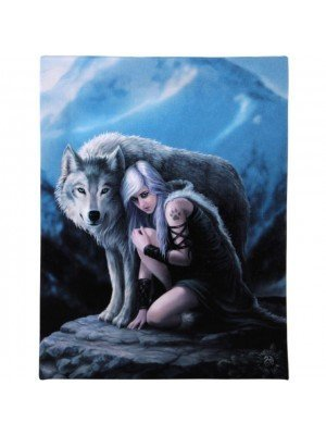Anne Stokes Wall Canvas - Protector