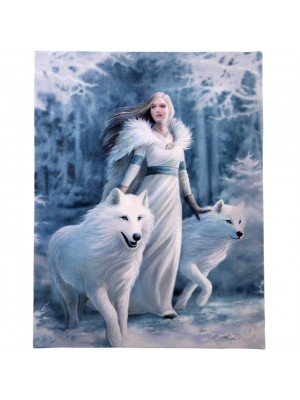 Anne Stokes Wall Canvas - Winter Guardian