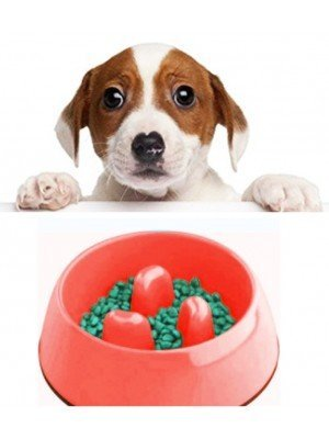 Anti-Choke Pet Food Bowl - Assorted Colours