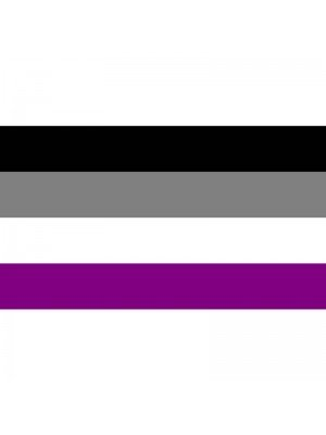 Wholesale Asexual Flag - 5ft x 3ft
