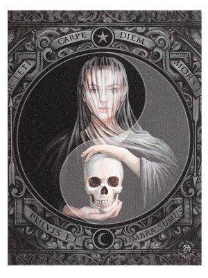 Beyond The Veil Canvas Plaque By Alchemy - 25 x 19cm