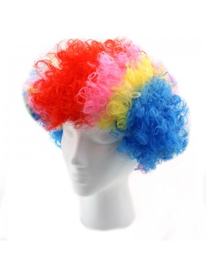 Clown Wig - Multi Colour