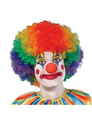 Coloured Clown Rainbow Wig