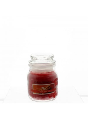 Dainty & Heaps Scented Jar Candles Cinnamon 3 oz