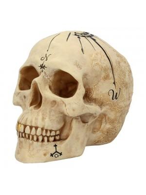 Dead Mans Map Skull Figurine - 18cm
