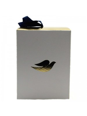 Dove Box of Care with Luxury Shower Puff - Travel Size
