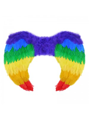 Feather Rainbow Wings