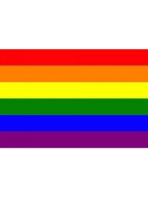 Rainbow Flag - 3ft x 2ft