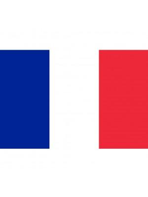 France Flag - 5ft x 3ft