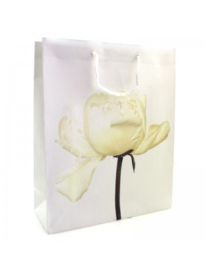 Gift Bag - Cream petal flower printed gift bag with white cord handles wholesale