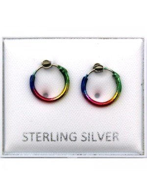 Wholesale Rainbow Hoop Earrings - 10mm