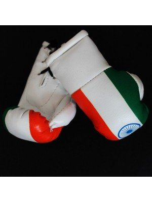 Mini Boxing Gloves - India