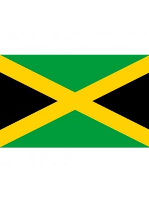 Jamaica's Flag 3ft x 2ft