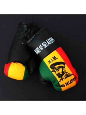 Mini Boxing Gloves - King Of Selassiei