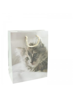 Kitten Print Print Gift Bag - 12 x 15 x 6cm