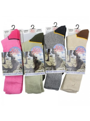 Ladies Ultimate Walking Socks - Assorted Colours