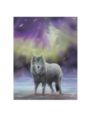 Anne Stokes Wall Canvas - Aurora