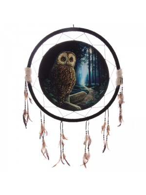 Lisa Parker The Way of The Witch Owl Dreamcatcher - 60cm
