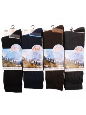 Men's Ultimate Walking Socks - Assorted Colours