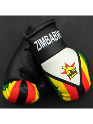 Mini Boxing Gloves - Zimbabwe