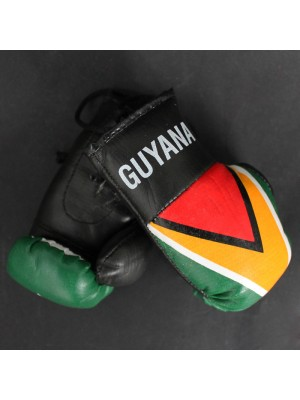 Mini Boxing Gloves - Guyana