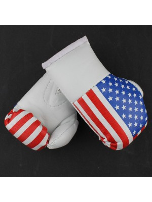 Mini Boxing Gloves - United States of America