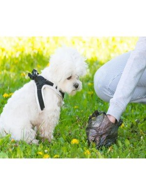 Degradable Doggy Poo Bags (Pack of 75)