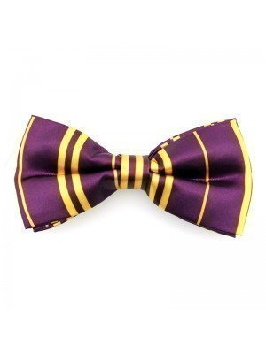 Purple & Gold Bow Tie