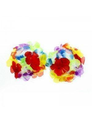 Rainbow Hula Bra