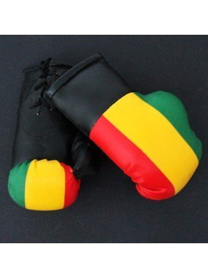 Mini Boxing Gloves - Rasta