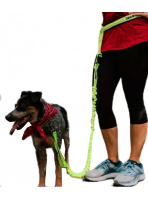 Safety Hands Free Running Dog Lead And Waist Belt