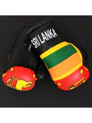 Mini Boxing Gloves - Sri Lanka