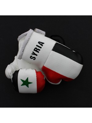Mini Boxing Gloves - Syria