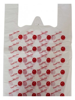 Thank You & Have a Nice Day Written Carrier Bag-11x17x21""
