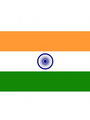 "Twin Pack India Car Flag (15""x10"")"