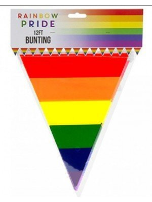 Wholesale Rainbow Triangular Bunting- 12FT