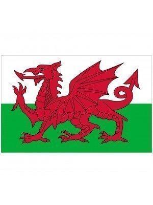"""Wales Car Flag (17"""" x 10"""")"""