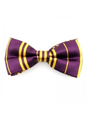 Purple & Gold Bow Tie