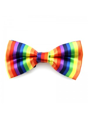 Rainbow Colour Bow Tie