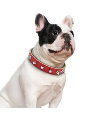 Medium Size Studded Dog Collars - Assorted Colours